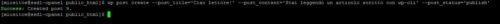 Immagine della guida WP-cli: Lo strumento per gestire WP al 100% del sito Cionfs.it