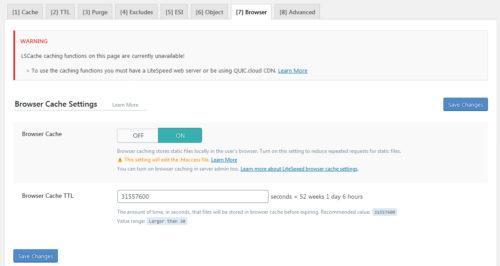 Immagine della guida Litespeed Cache plugin per Wordpress del sito Cionfs.it